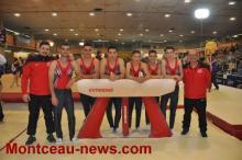 Alliance Elan Gymnique Montcellienne (gym)