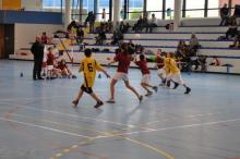 Tournoi Olympiques de Handball des jeux Olympiques de Saône et Loire