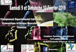 Championnats départementaux Individuels de gymnastique artistique masculine et féminine