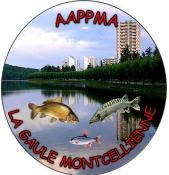 Gaule Montcellienne (Montceau-les-Mines)