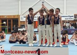 Alliance Elan Gymnique Montcellienne (gym)