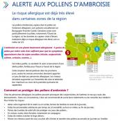 Alerte aux pollens d'ambroisie (Environnement - santé)