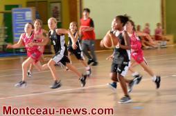 Les échos du CSL Basket (Saint-Vallier)