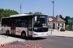 CCM - Transports urbainset transport à la demande