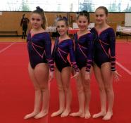 Championnat de Bourgogne de gymnastique ce week-end à Sanvignes