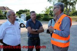 Environnement - Une nouvelle méthode «écologique» contre la chenille processionnaire testée à Saint-Vallier