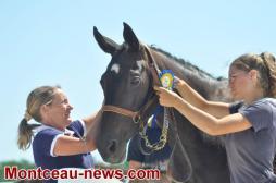 Blanzy  : Concours de foals