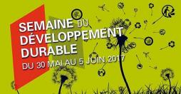 Développement durable(CCM)