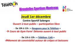 Hirondelles Sportives (Montceau-les-Mines)