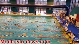 Meeting de natation du MON (Montceau)