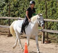Initiation à l'équitation pour les vacances ....