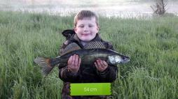 Ouverture du carnassier (pêche)