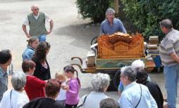 Fête de L'Automne à Saint-Vallier