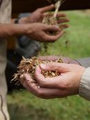 Environnement – Le 25 avril entre 10h et 12h sur la plateforme de compostage