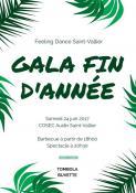 Gala fin d'année du Feeling Dance (Saint-Vallier)