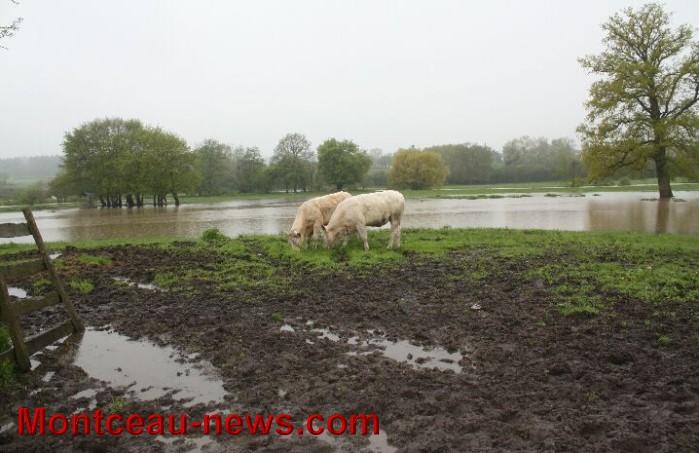 innondation 03051310
