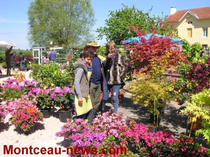 passion jardin 05051435