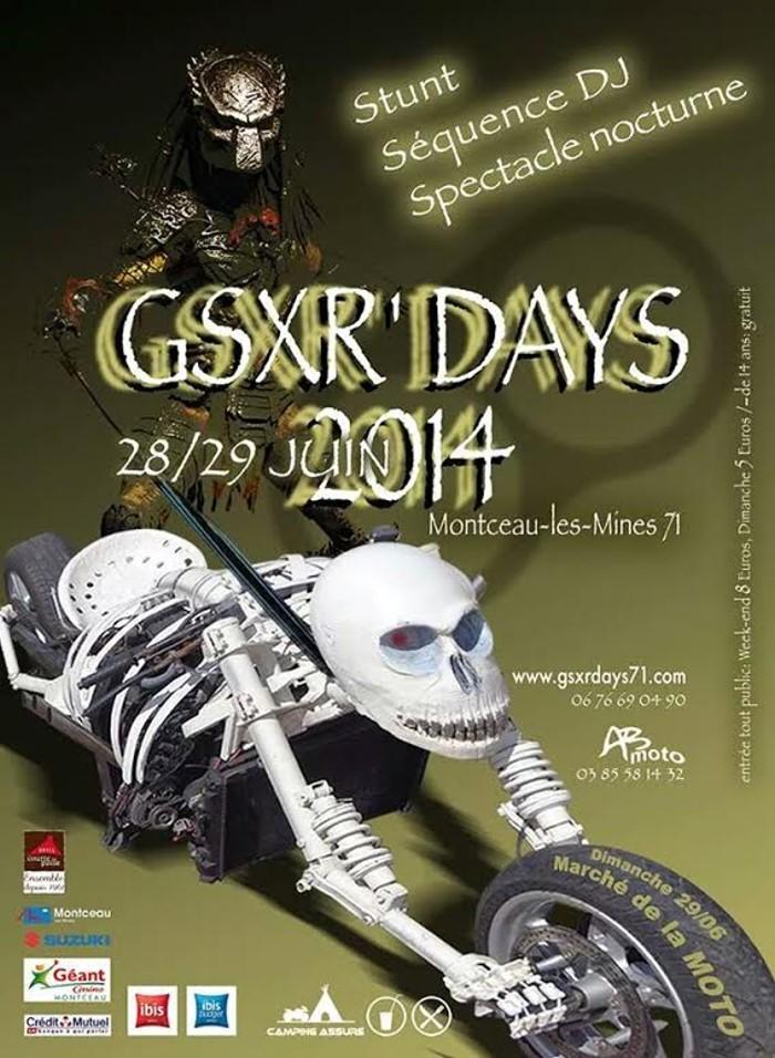 gsxr 2014 1606142