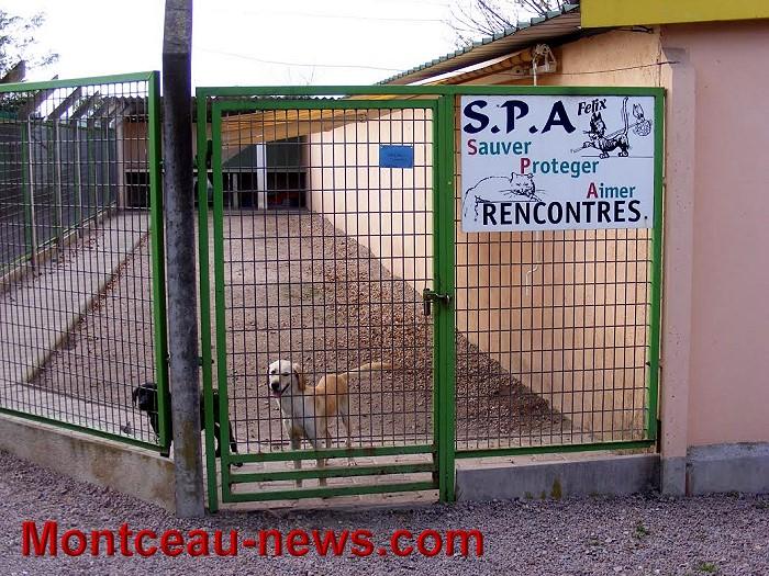 spa – refuge jean roche (montceaulesmines) « montceau news  l