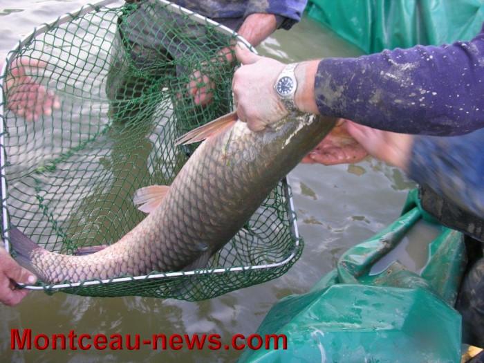 Sur la pêche sérieusement toutes les émissions télécharger