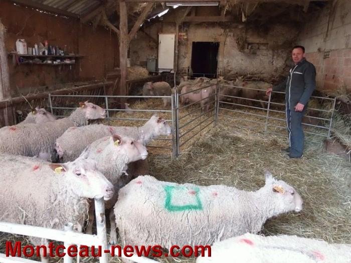 agri uxeau 2502155