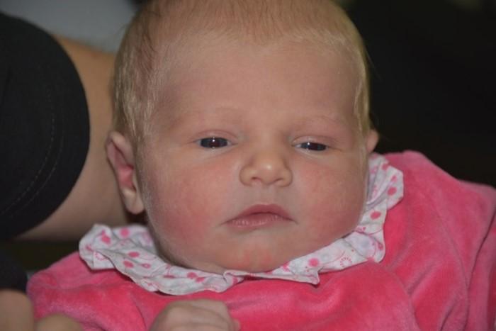 bebe lina 2804152