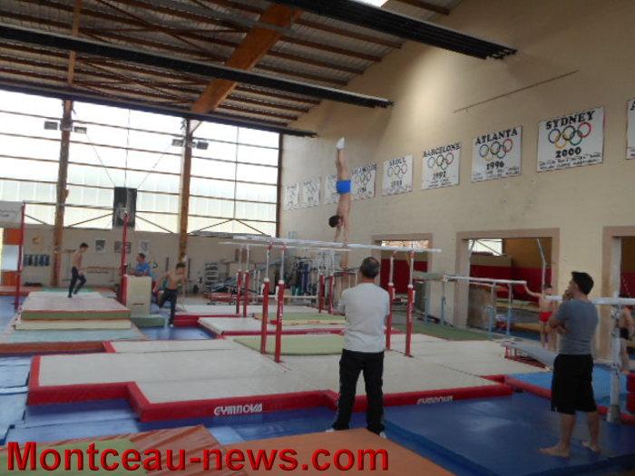 gym mont 2304156