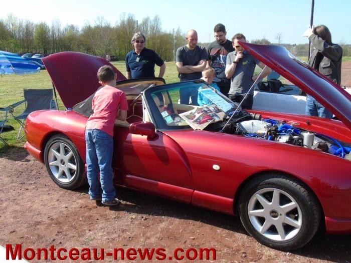 lions voiture 13041512