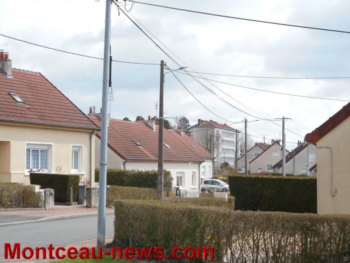 quartier bois garnier 1504155