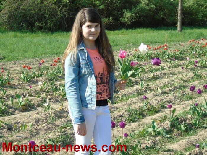 st ex tulipe 2404154