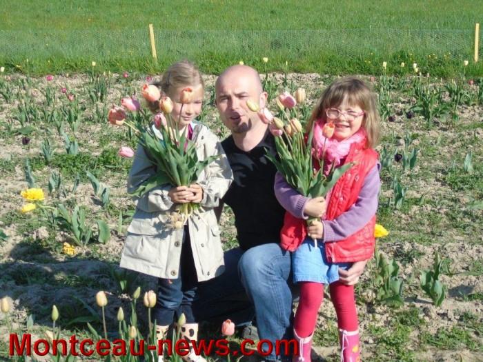 tulipes 24041515