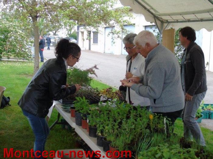 inau jardin mont 09051512