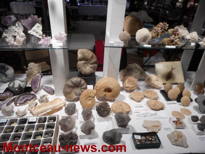 pierre expo 17051510