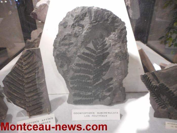 pierre expo 17051517
