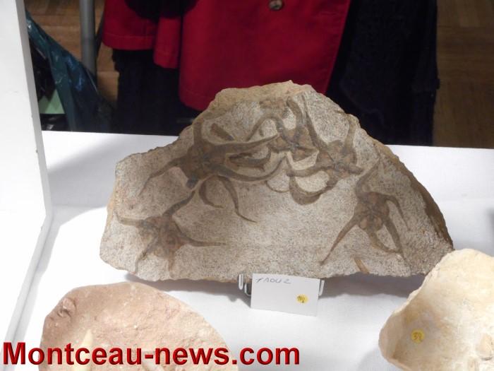 pierre expo 17051520