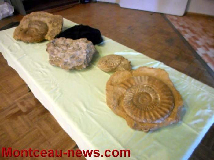 pierre expo 1705154