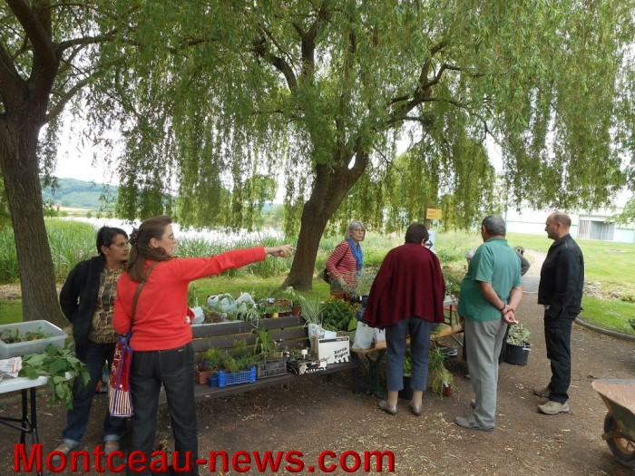 troc plants st vallier 31051516