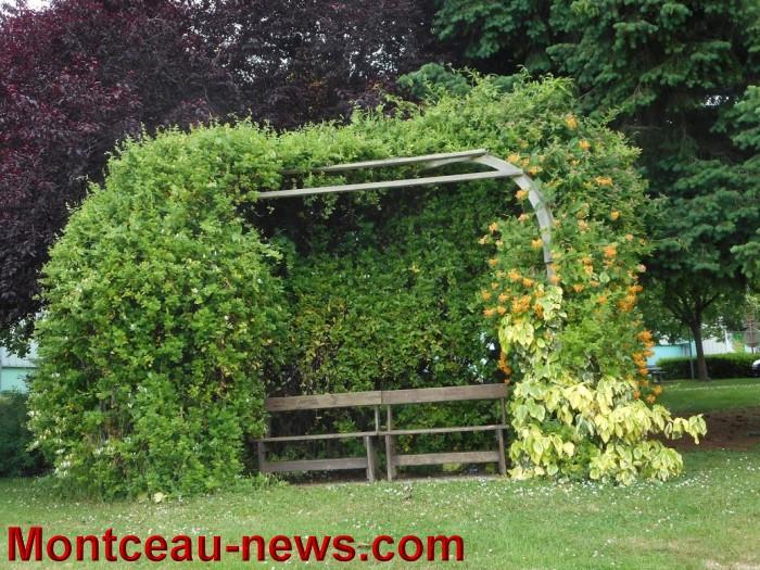 troc plants st vallier 3105152