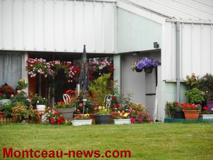troc plants st vallier 3105153