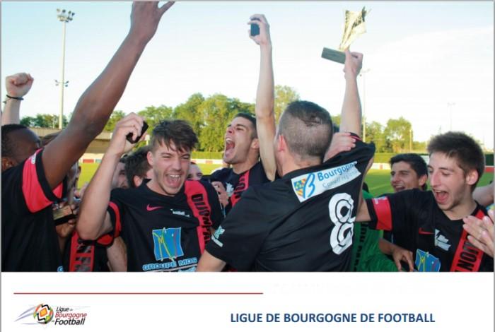 ligue foot 0205152