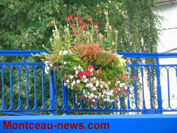 fleurs blanzy 23071513