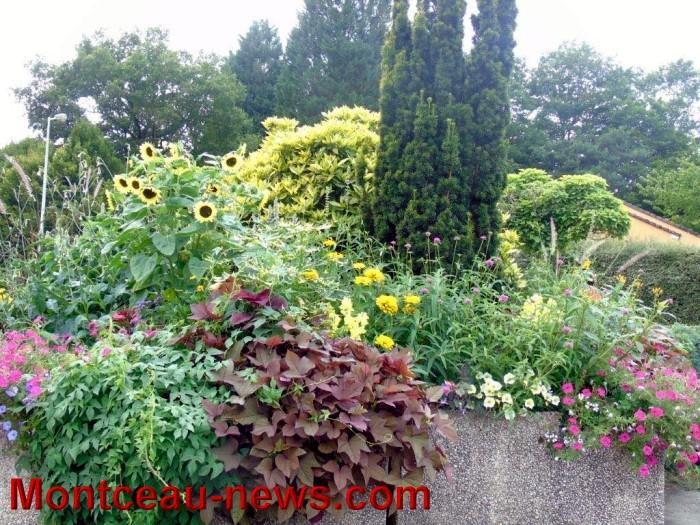 fleurs blanzy 23071517