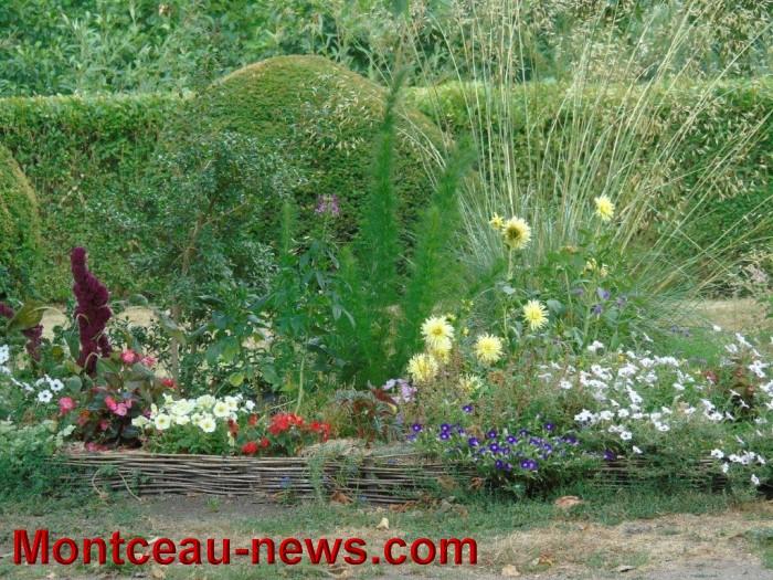 fleurs blanzy 23071520