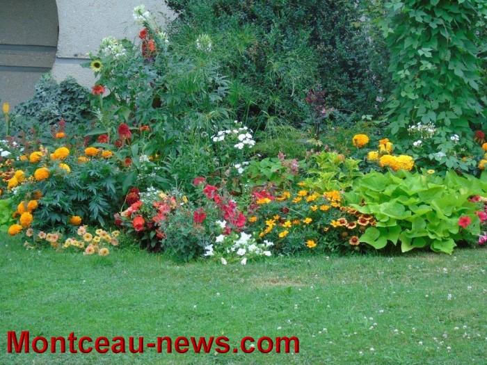 fleurs blanzy 23071523