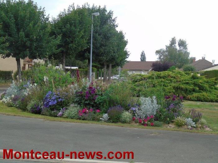 fleurs blanzy 2307153
