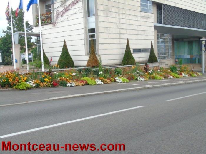 fleurs blanzy 2307157