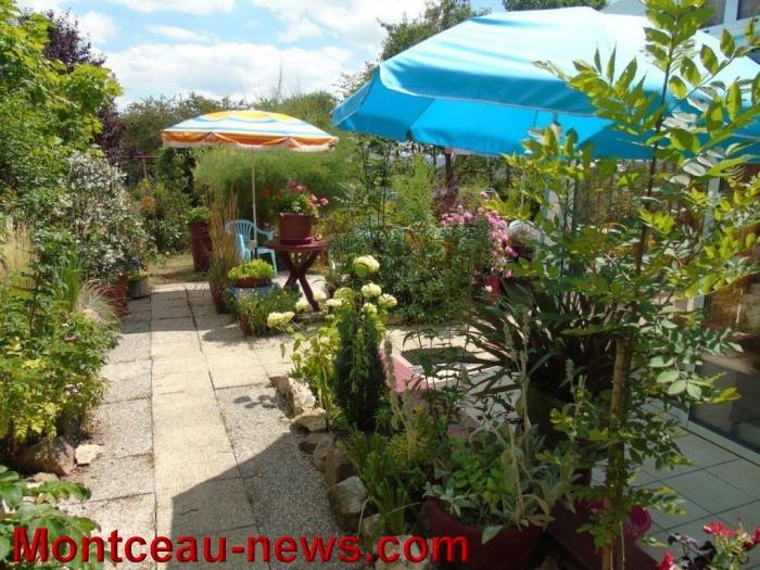 fleurs mont 24071513