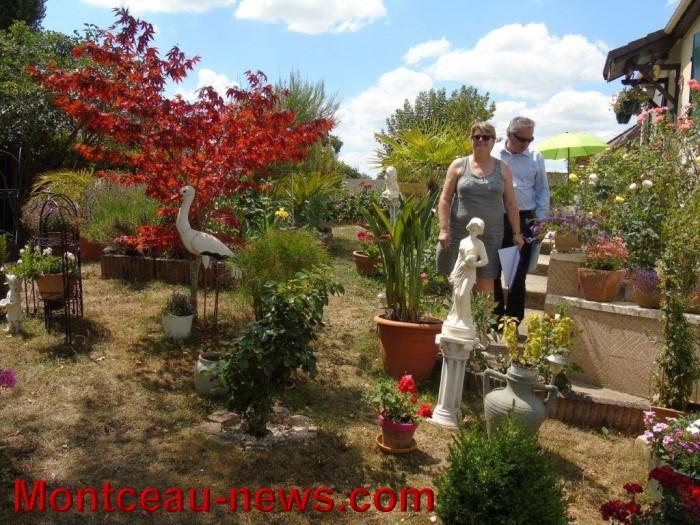 fleurs mont 24071517