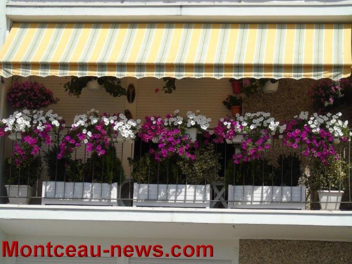 fleurs mont 24071526