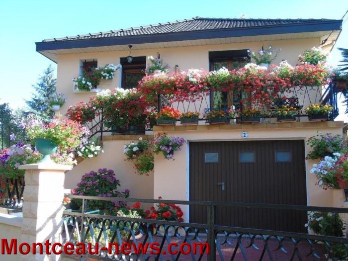 fleurs mont 24071529
